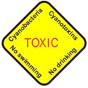 Cyanotoxins